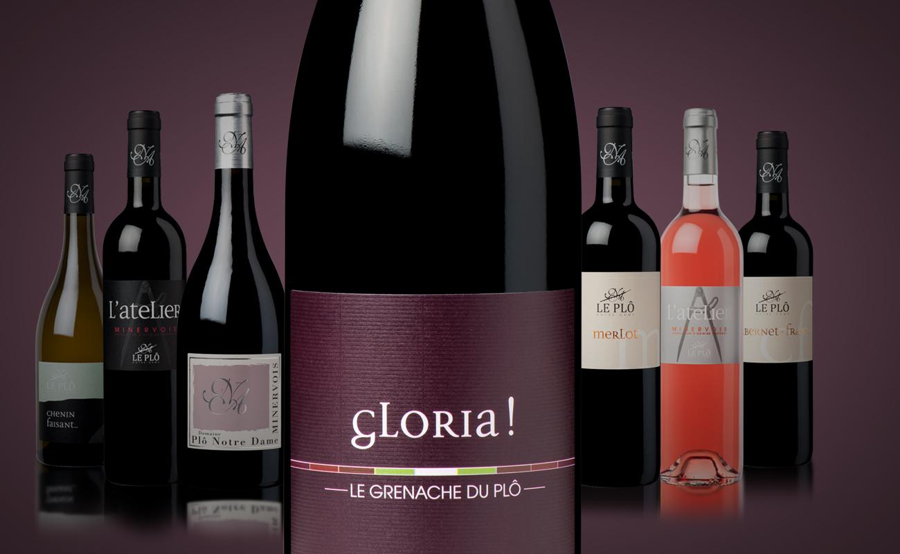 large_gloria
